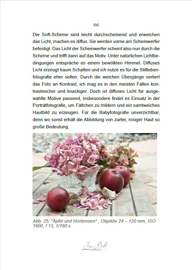 Ein Blick ins Buch - PDF 120 Seiten - Stillleben für Anfänger von Jana Bath